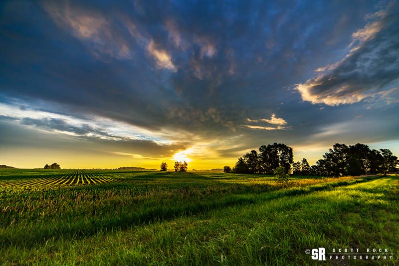 landscape print of sunrise over rural Bruce county ontario farm field